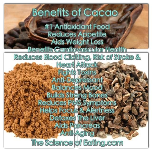 Cacao Contains Over 300 Compounds
