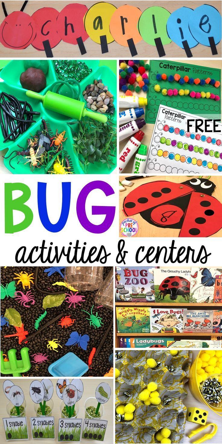 Bug Centers and Activities - Pocket of Preschool