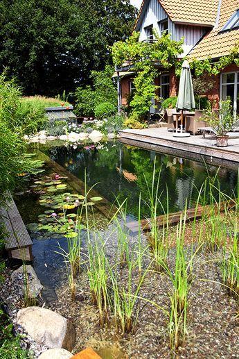 Wasser Direkt Am Wohnzimmer Schwimmteich Schwimmteich Naturschwimmbecken Naturschwimmbader