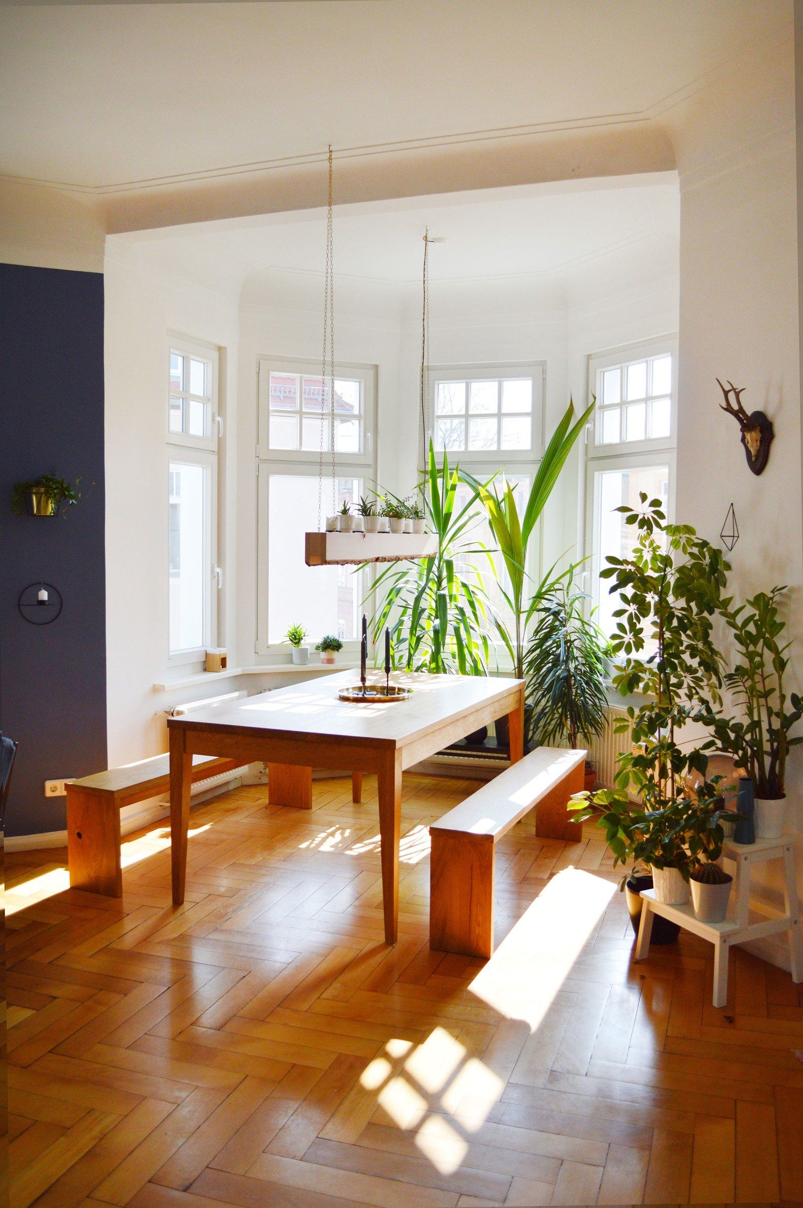 we all want to come home to this german apartment  bay