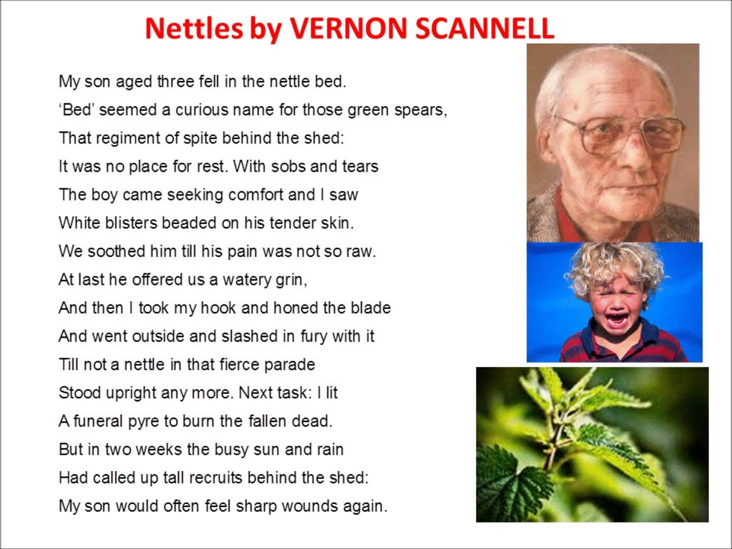nettles poem questions