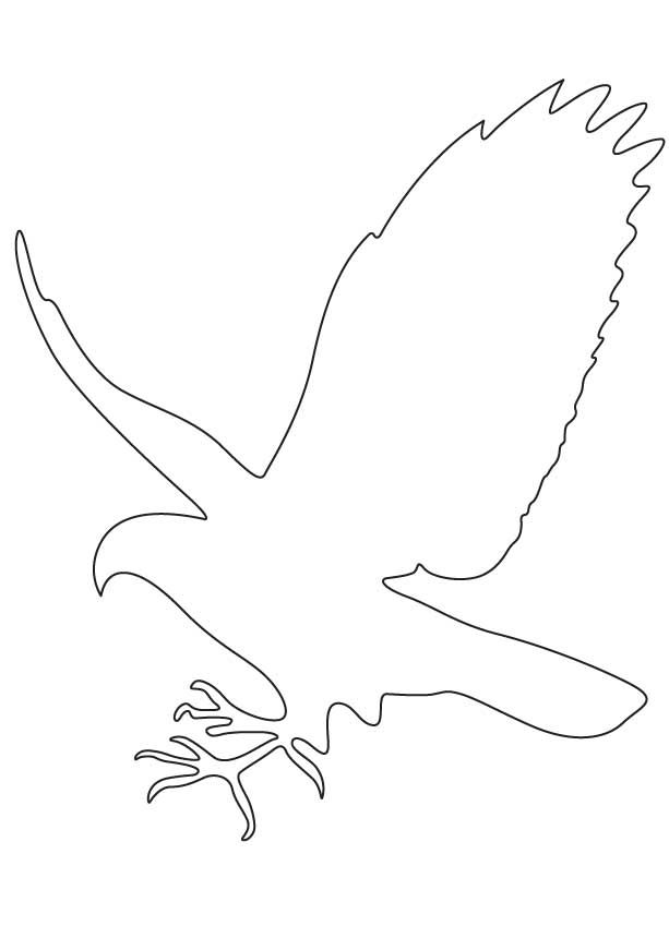Hawk Falcon Coloring Pages For Kids Preschool And Kindergarten