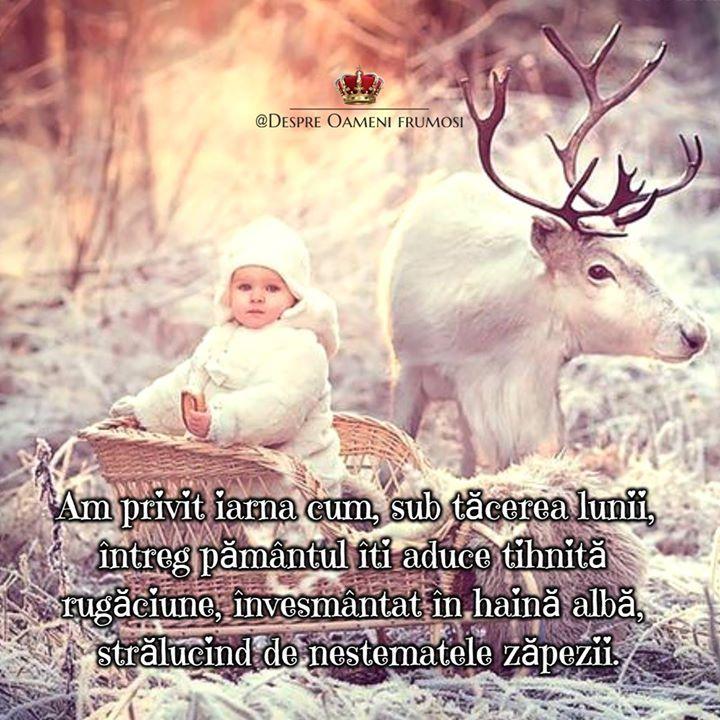 """""""Ce înseamna laudele mele înaintea Ta?   Eu nu am auzit cântarea heruvimilor - aceasta este partea sufletelor înalte - dar știu cum te slăvește firea.   Am privit iarna cum sub tăcerea lunii întreg pământul Îți aduce tihnită rugăciune învesmântat în haină albă strălucind de nestematele zăpezii.   Am văzut cum se bucură de Tine soarele care răsare și-am auzit corurile pasărilor slavoslovind.   Am auzit cum foșnesc codrii cântă vânturile și apele susură cu taină despre Tine am auzit cum Te…"""