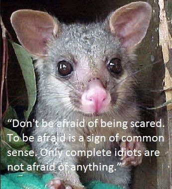 """""""Don't be afraid of being scared. To be afraid is a sign of common sense. Only complete idiots are not afraid of anything."""""""