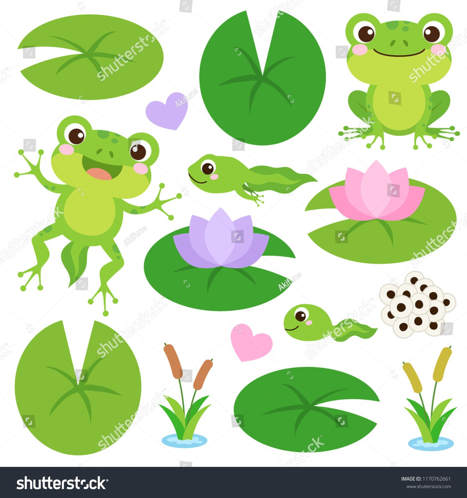 Set Of Cute Frogs Egg Masses Tadpole Froglet Frog Hearts