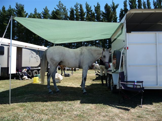 Creating Shade At Your Horse Trailer