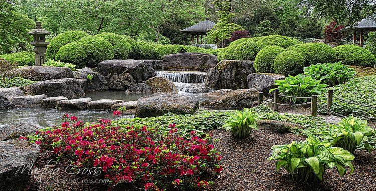 Botanischer Garten Augsburg Garden Images Plants Flowers