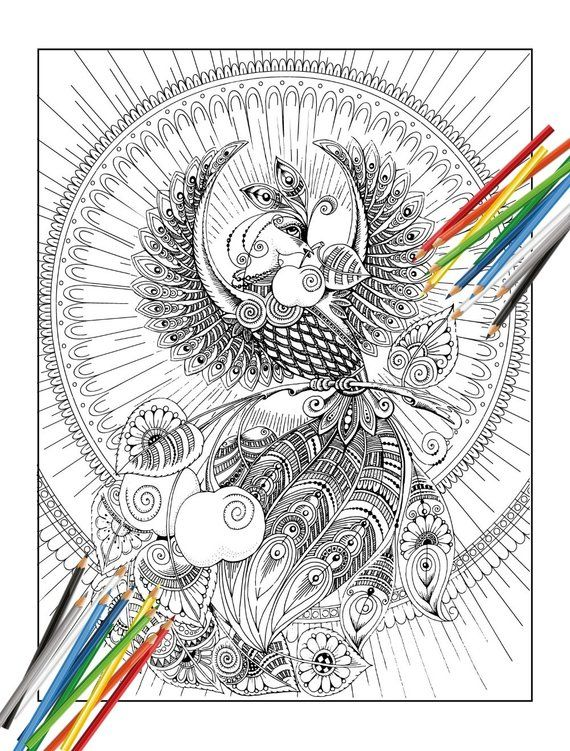Poster Coloring Book For Adults Firebird Black And White