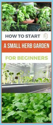 Indoor Gardening Tips You Will Love | How To Start Herb Garden On Balcony | Porc,  #Balcony #... #kleinekräutergärten