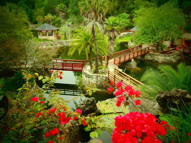 Cedar Lakes Woods And Gardens In Beuatiful Botanical Garden In Williston Florida Over 100