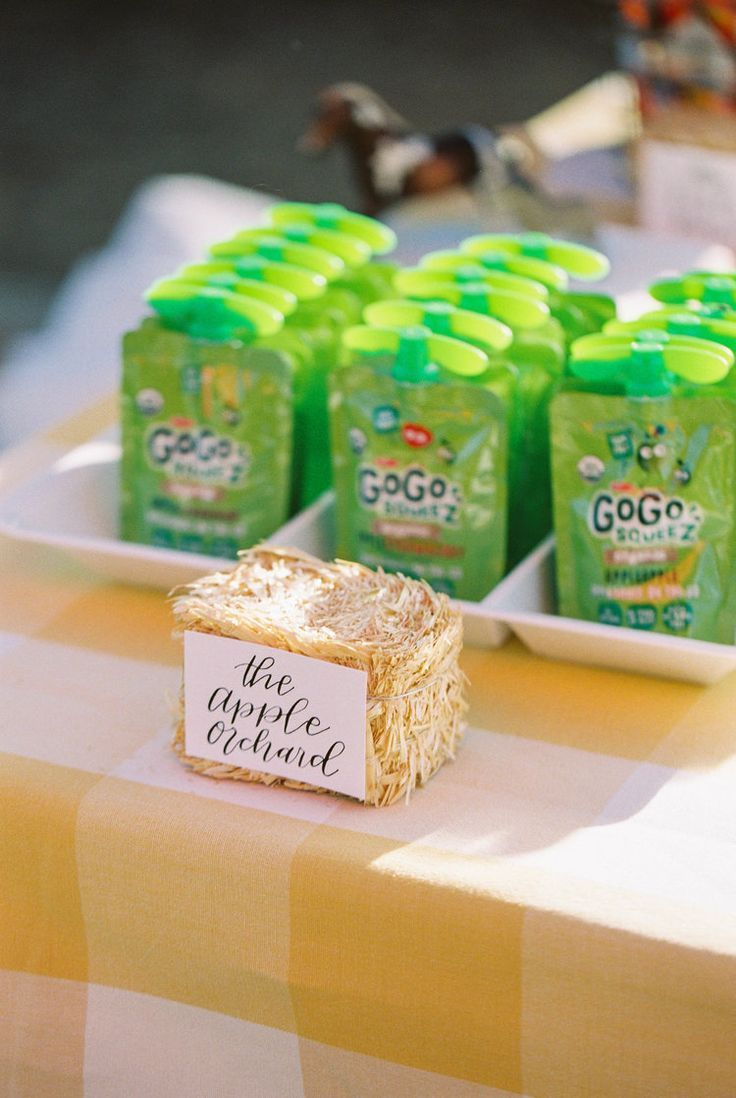 "Phoenix, Arizona Wedding Planner | Wild One Events — AN ""OLD MCDONALD HAD A FARM"" 2ND BIRTHDAY PARTY"
