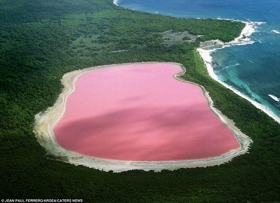 Extraordinary.   Hillier Lake, in Australia. The unexplained pink salt water lake.