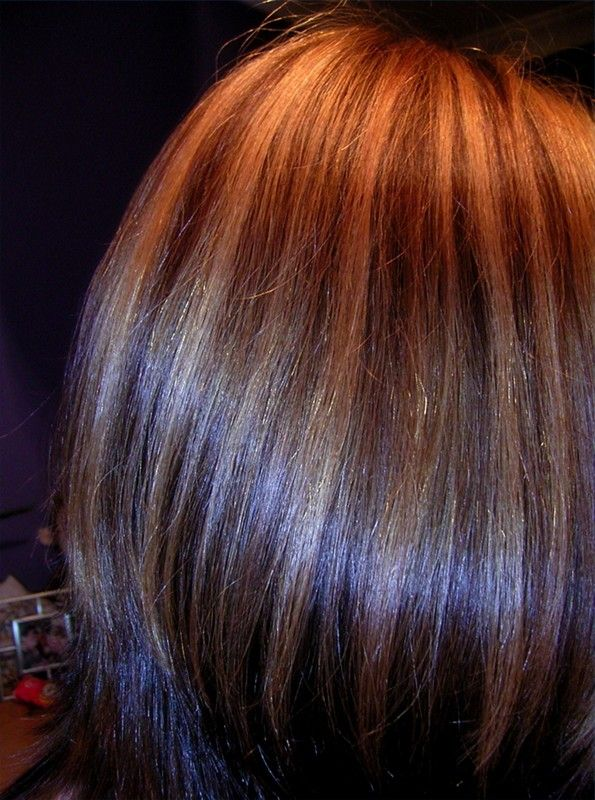 Lowlights For Dark Brown Hair Natural Looking Highlights For Dark
