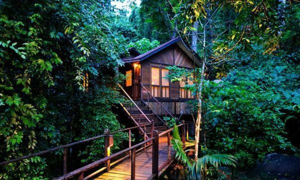 une cabane dans les arbres luxe nature et chic les arbres cabanes et nature. Black Bedroom Furniture Sets. Home Design Ideas