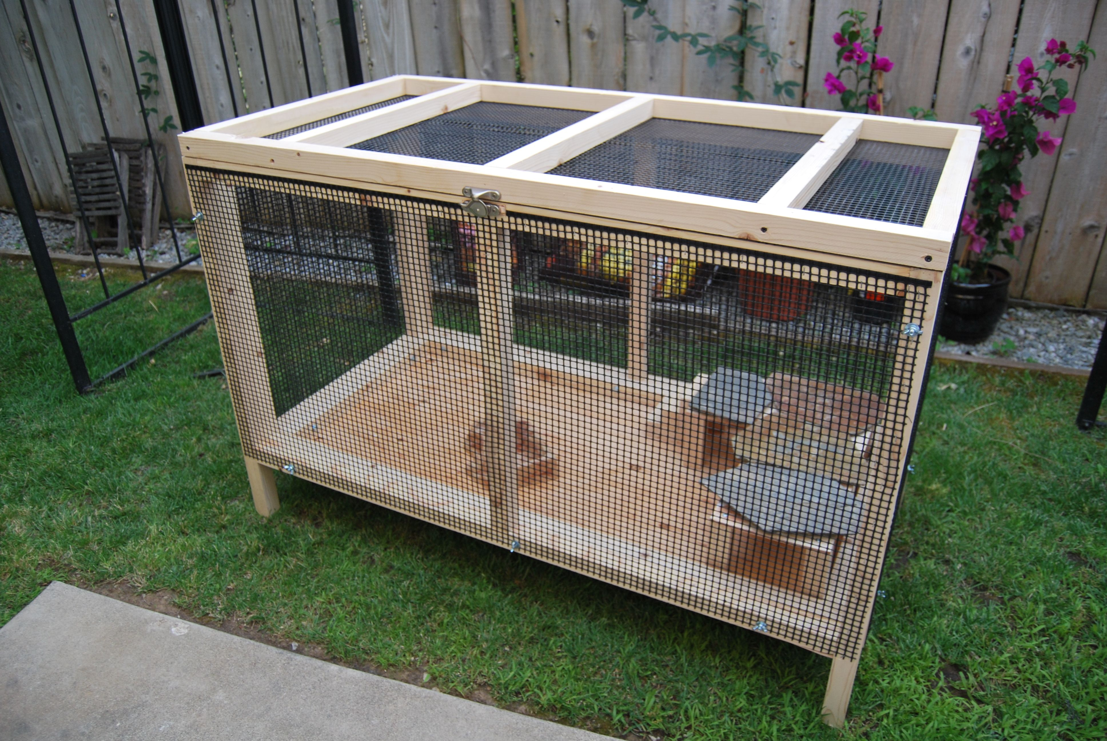 bearded dragon outdoor cage. Thinking about making one of ...