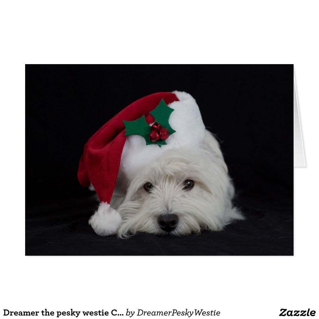 Dreamer The Pesky Westie Christmas Card Zazzle Com Westie Gift Westies Westie Dogs
