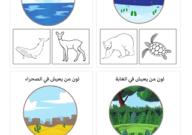تصنيف الحيوانات حسب البيئة تلوين الصورة الصحيحة Art Pincode