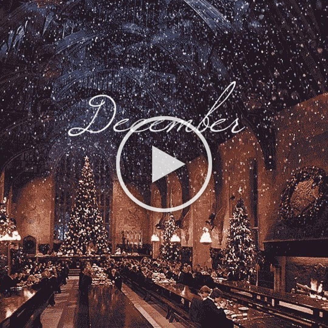 sapin décoration déco froid neige glace cadeau cadeaux noel noêl noël #september #christmastime #christmasmood #christmasvibes #christmaslove #christmaslights #lights #christmastree #christmasdecor #christmasdecorations #christmas2019 #christmaslights #christmasmagic #christmasspirit #christmascountdown m#christmaspresents #christmasgift #christmaspresents #christmashappiness #happykids #happychildren #beautifulchristmastree #beautifulchristmasdecorations #itsbeginningtolookalotlikechristmas