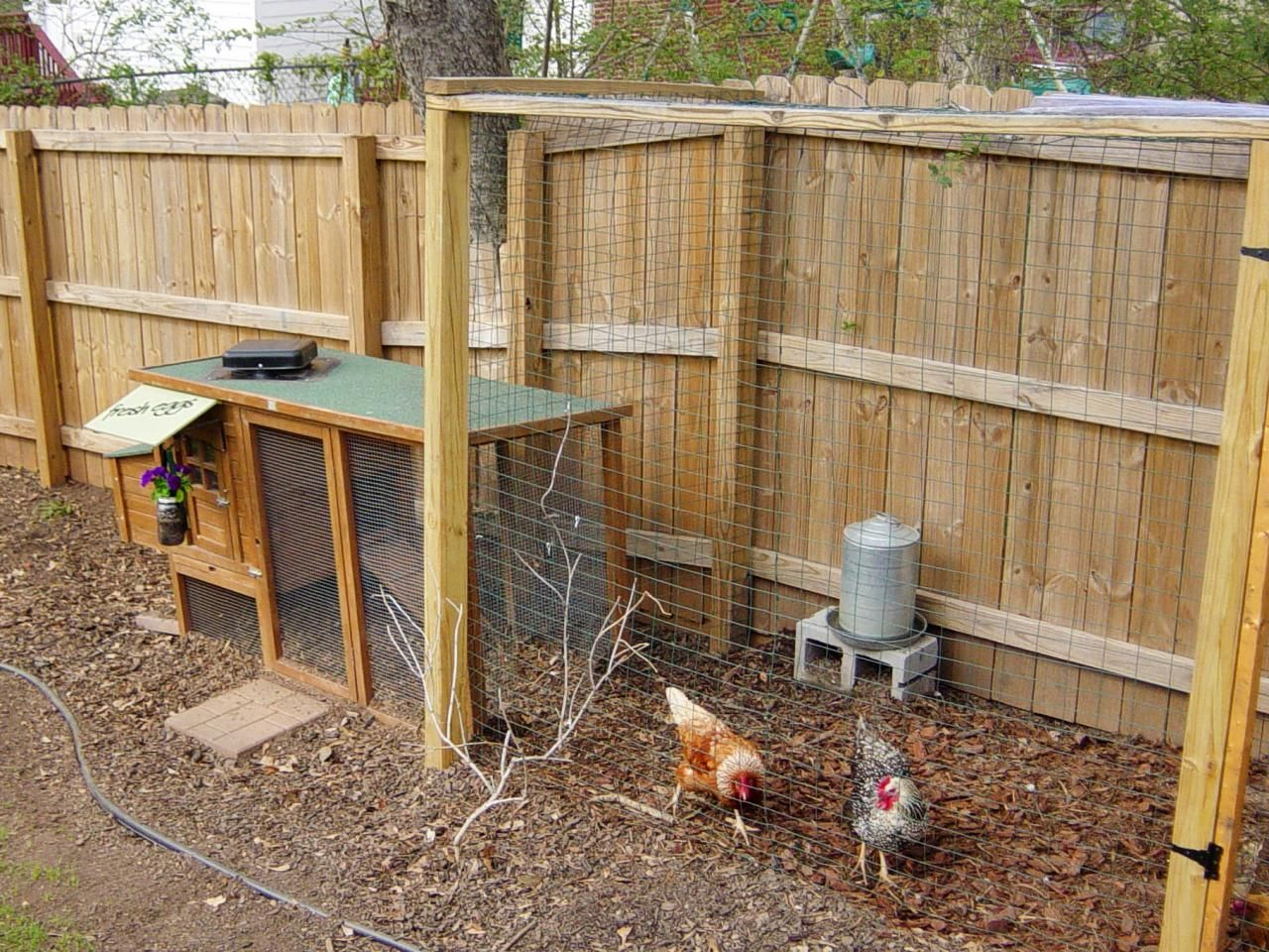 Charmant Chicken Coops For Backyard Flocks