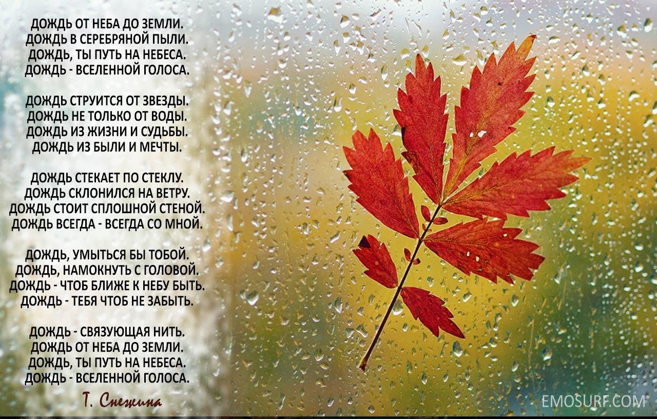 стихи о дожде с картинками еврокубы могут быть