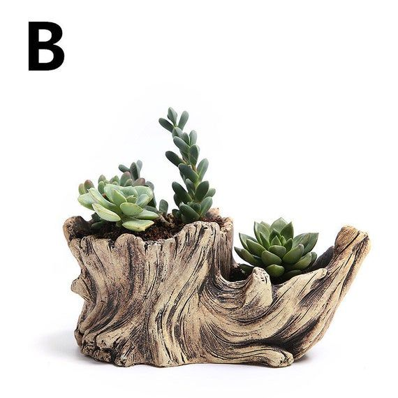 Photo of Wood Succulent Planter, Root Carving, Succulent Planter, Succulent Planter, Rustic Wood Display Box, Shelf Accessory, Desk Accessory