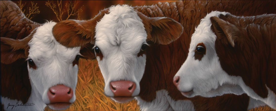 Cow painting by wildlife artists Jerry Gadamus