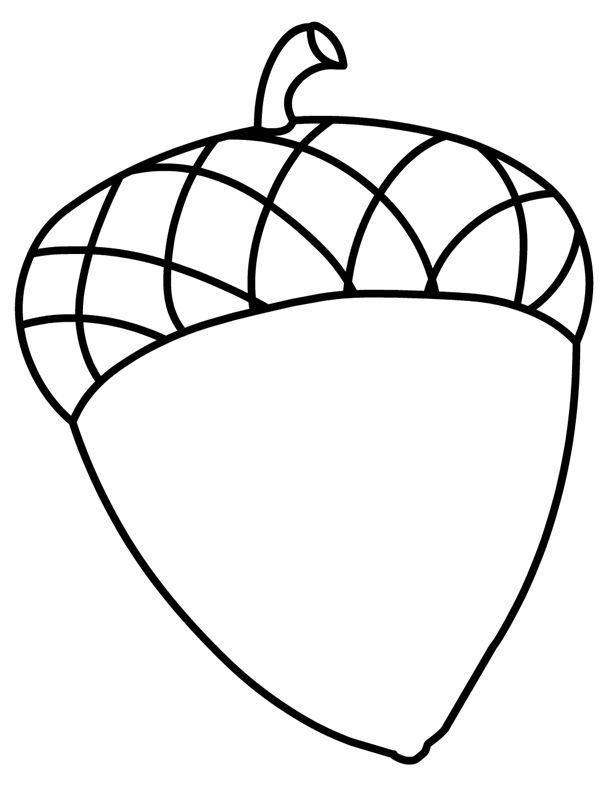 acorn coloring page # 3