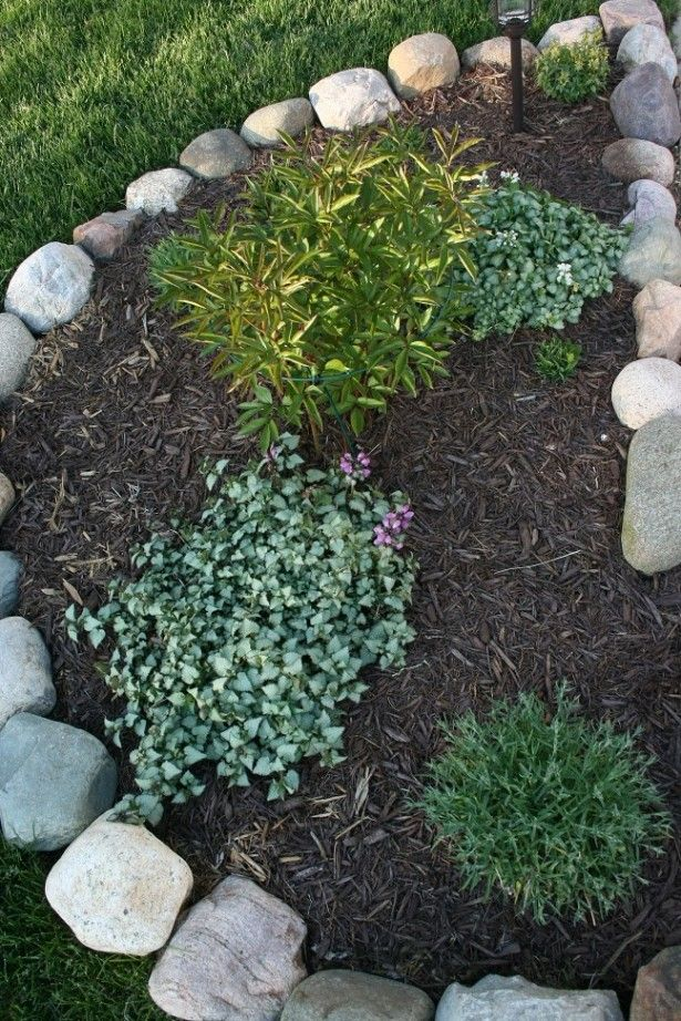 Borders for small flower gardens small house garden for Small flower bed ideas