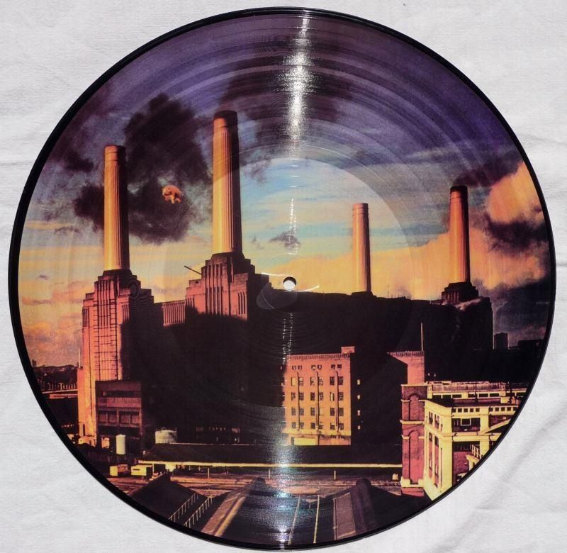 Animals Picture Vinyl 1977 Pink Floid в 2019 г Vinyl