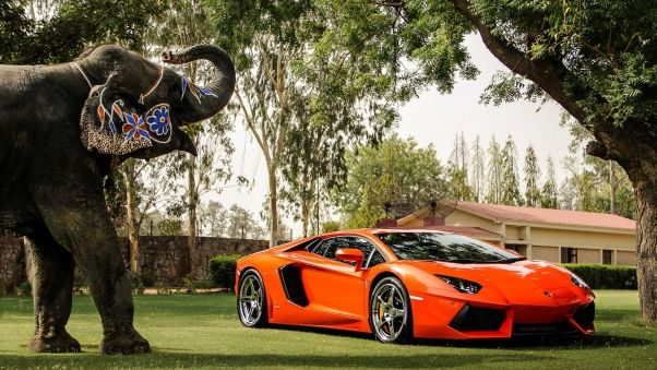 lamborghini aventador, hd lamborghini wallpapers and backgrounds