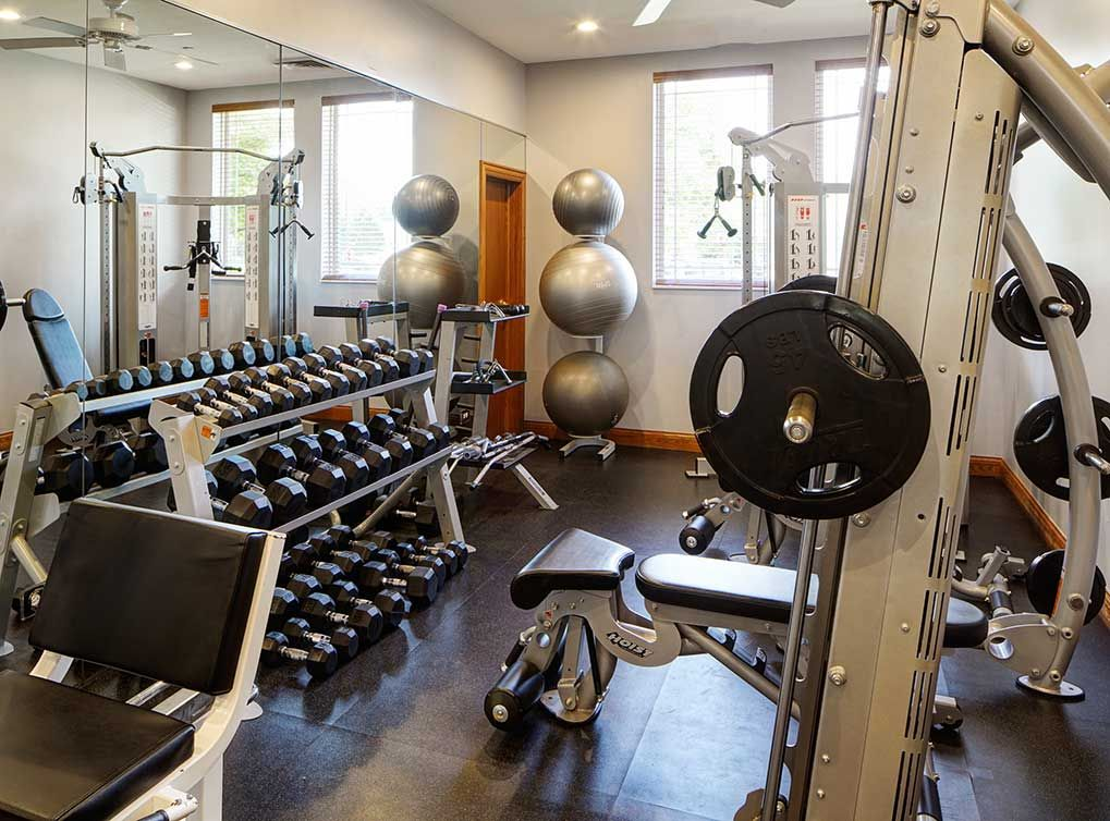 Pump Some Iron In The Fitness Room Luxury Apartments Apartment Workout Rooms