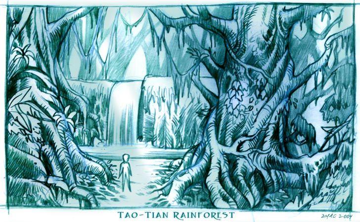 rainforest pencil drawing - Google Search | rainforests ...