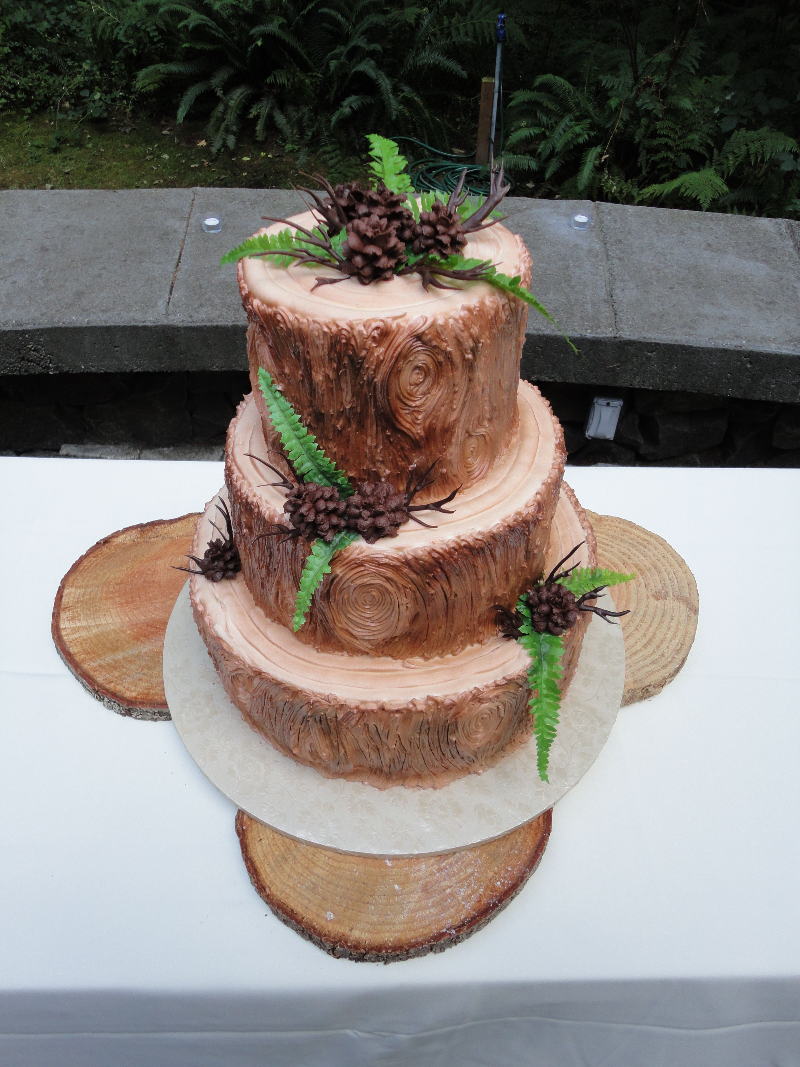 Rustic Wedding Cake With Ferns Pinecones And Sticks Themed Wedding Cakes Wood Wedding Cakes Wedding Cake Rustic