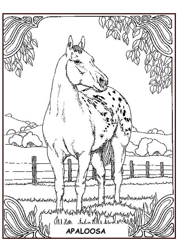 coloring page Horses Kids-n-Fun | Mamie\'s Projects to try ...