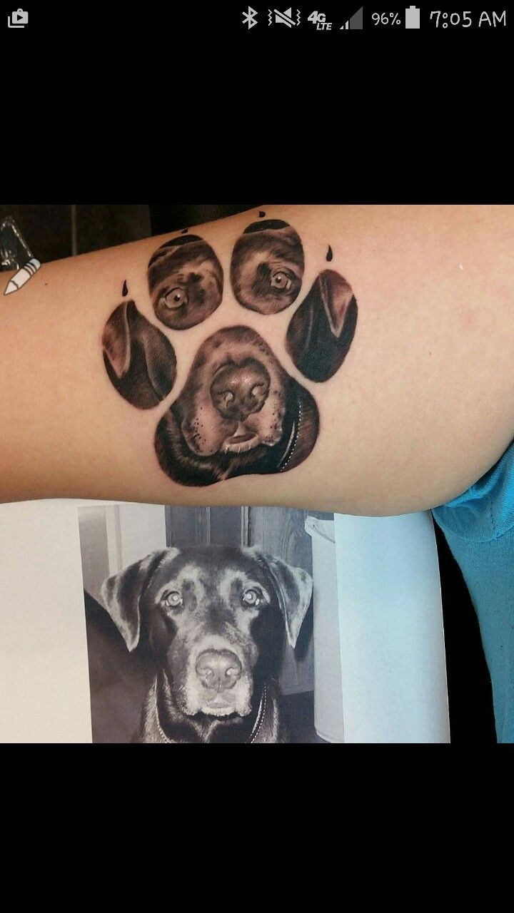 Pin by jessica dove on tattoo pinterest tattoo tatting and had fun today with this dog paw tattoo client brought me the old photo of her dog and we put him inside a paw biocorpaavc