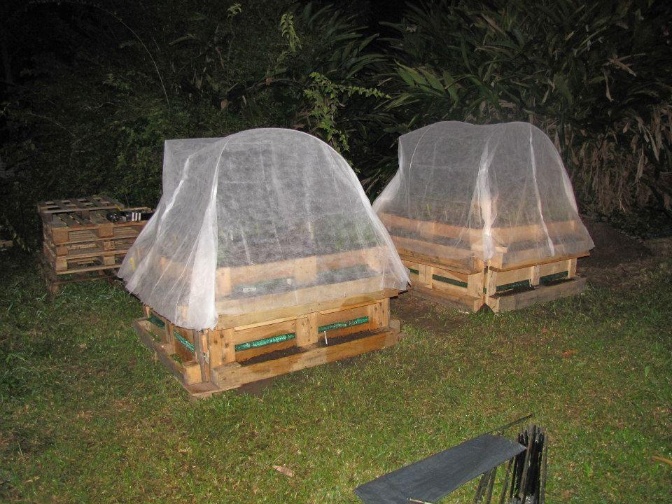 une serre fait maison avec des arceaux de tente potager carré - maison avec tour carree