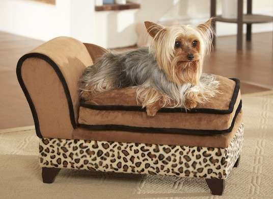 Dog Bed On Top And Pet Toy Storage Underneath Pet Sofa Bed Dog Sofa Dog Bed