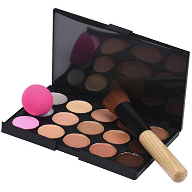 Tenworld 1PC Makeup Brushes 15 Colors Concealer Palette