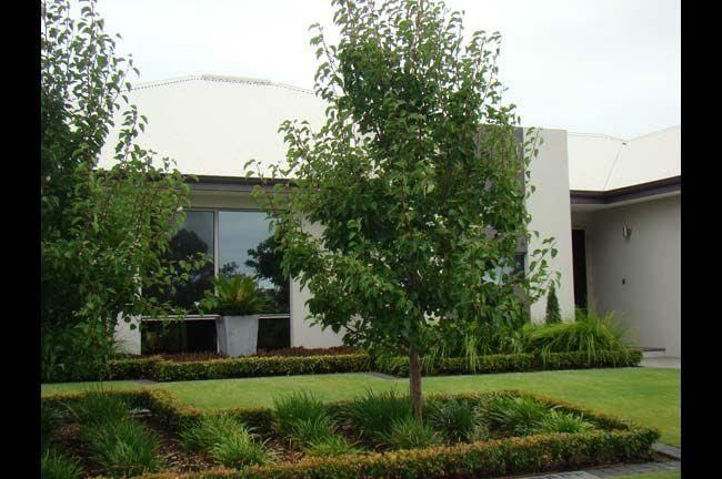 Mondo Landscapes - Award winning landscape design in Perth ...