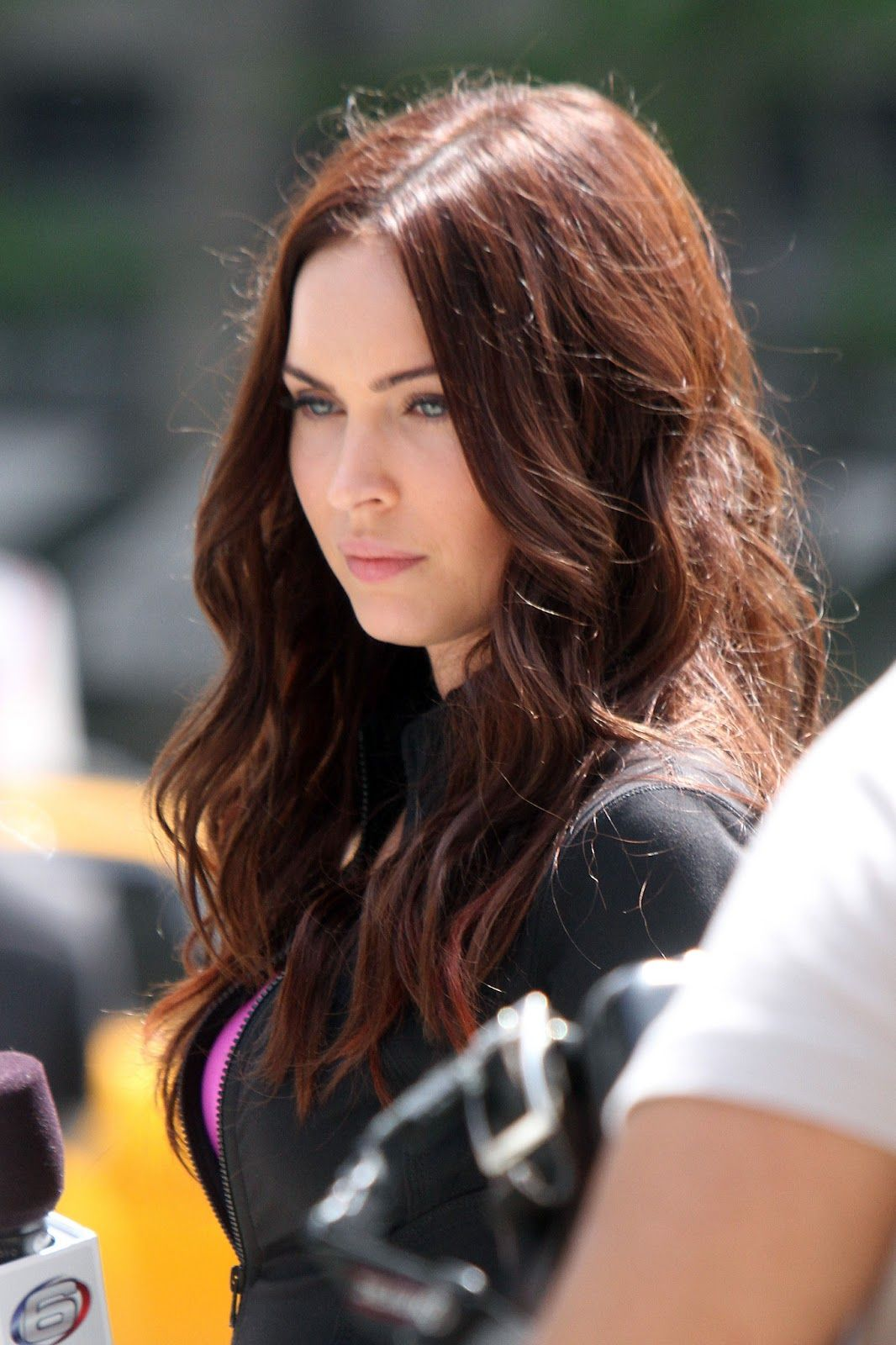 Megan Fox Waht Are You Spanish Redish Brown Color Then Looks