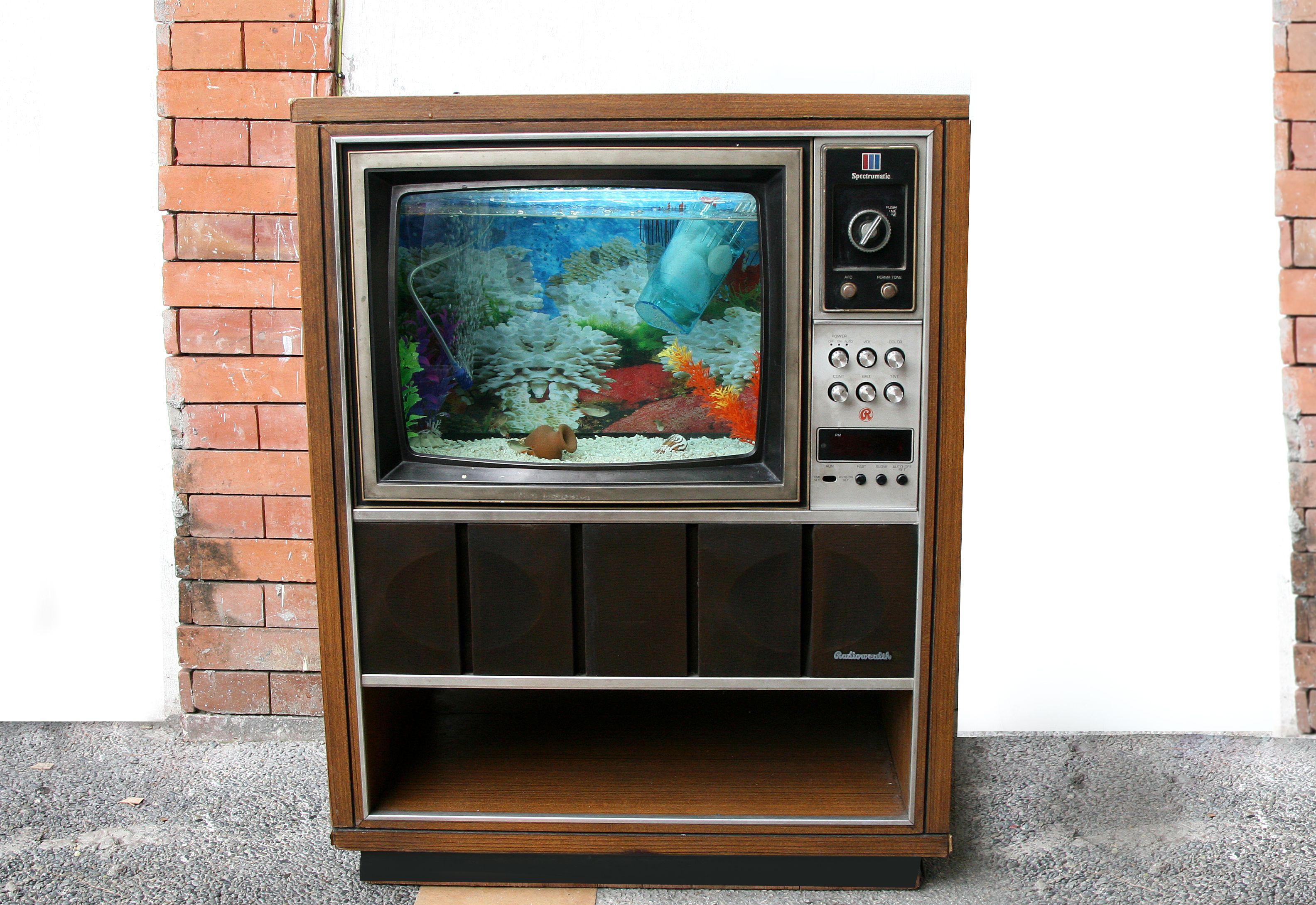 Vintage TV turned into fish tank Vintage Pinterest
