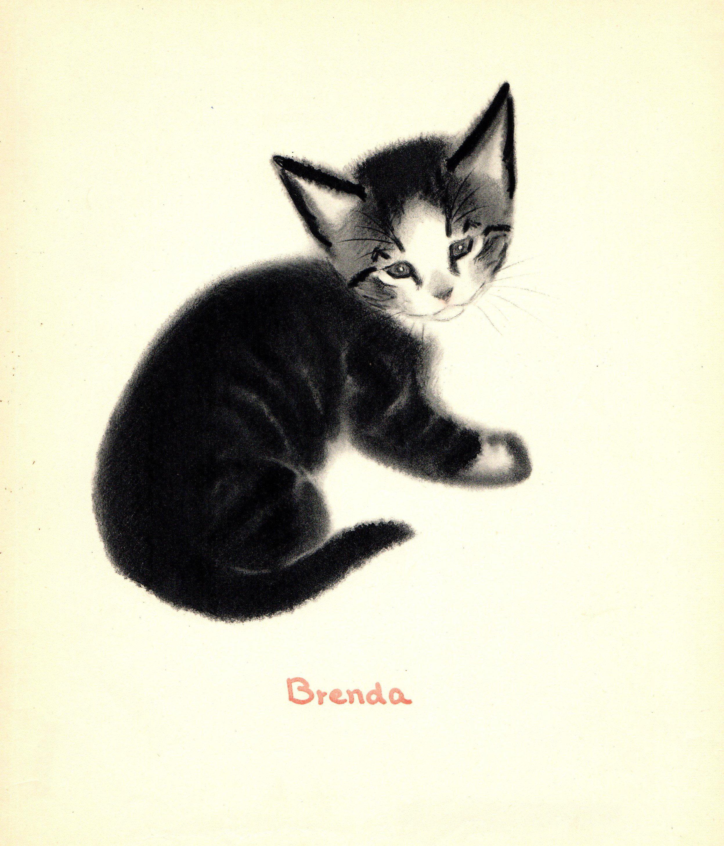 1940s Vintage Black Cat Art Print Brenda The Kitten Black Cat Art Cat Art Cat Art Print