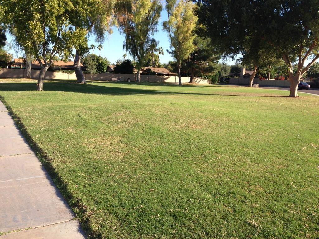 Neighborhood park in Scottsdale Arizona