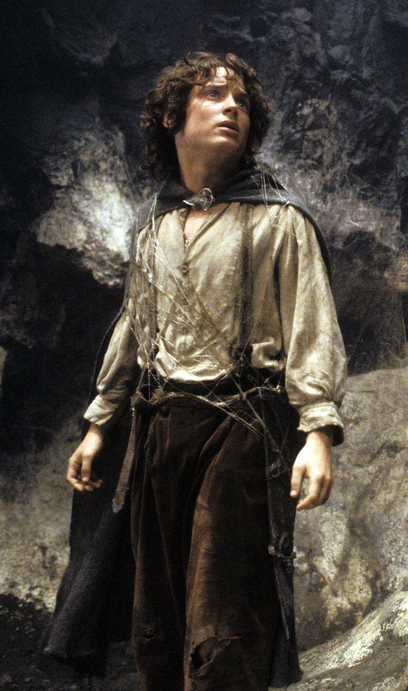 The Dark Reason Why Elijah Wood's Career Stalled After ...   Elijah Wood Frodo Poster