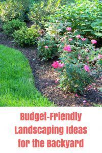 5 Backyard Landscaping Ideas on a Budget | Cheap landscaping ideas on backyard doors ideas, backyard gardening ideas, backyard walls ideas, backyard irrigation ideas, backyard mulching ideas, backyard plants ideas, backyard lawn ideas, backyard concrete ideas, backyard brickwork ideas, backyard walkways ideas, backyard arbors ideas, backyard construction ideas, backyard steps ideas, backyard xeriscaping ideas, backyard bathrooms ideas, backyard firewood ideas, backyard landscaping ideas, backyard grading ideas, backyard nursery ideas, backyard canopy ideas,