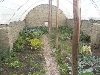 underground greenhouse - Earth Sheltered Greenhouse Plans