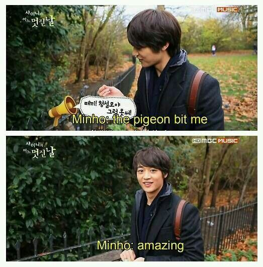 We should just live our life like minho. His face makes me laugh so hard! You should reenact that second scene.