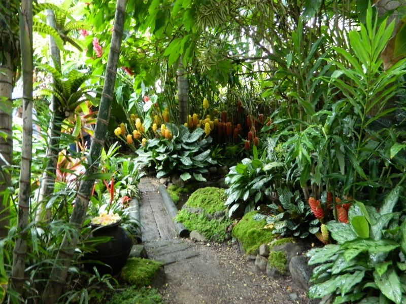 sub tropical garden design ideas Google Search Gardening