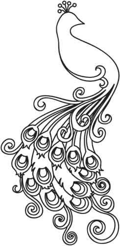 pretty peacock outline | My vintage gardens | Pinterest | Diseño de ...