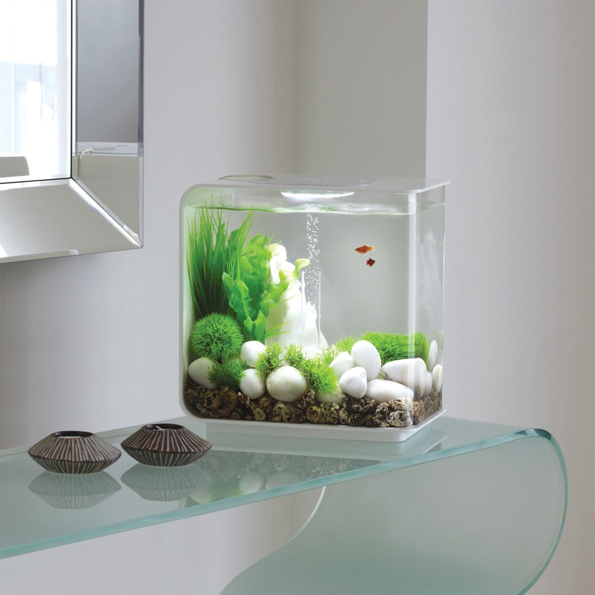 Biorb flow aquarium d co jardin poissons et d corations for Deco bocal poisson